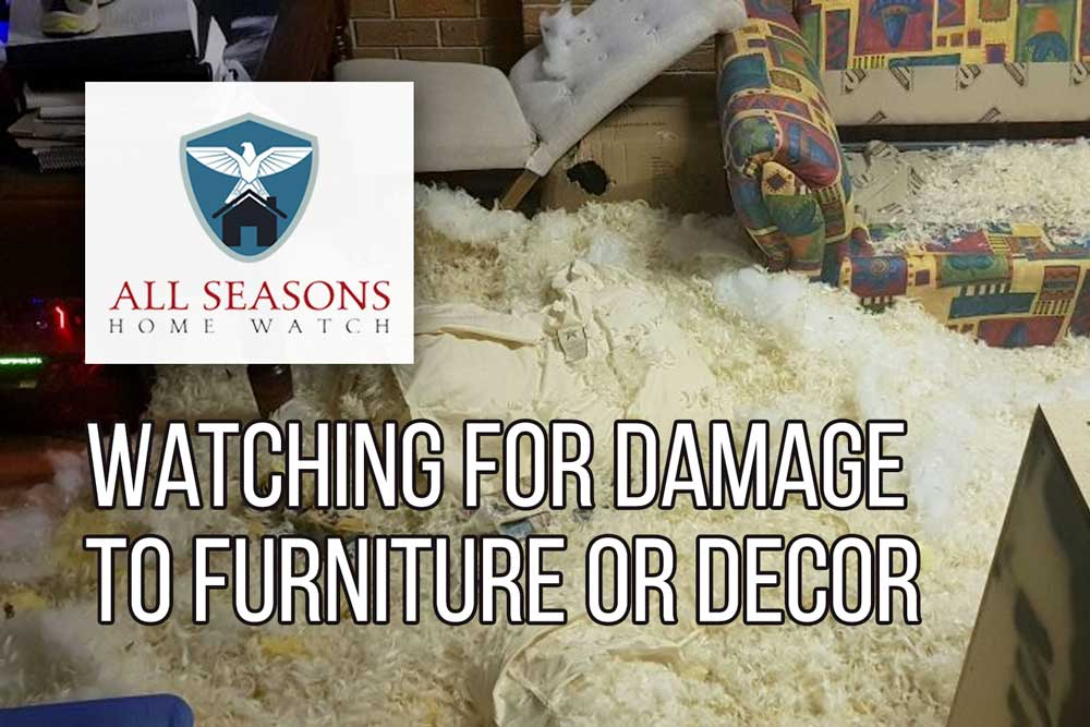 Checking For Any Furniture Damage